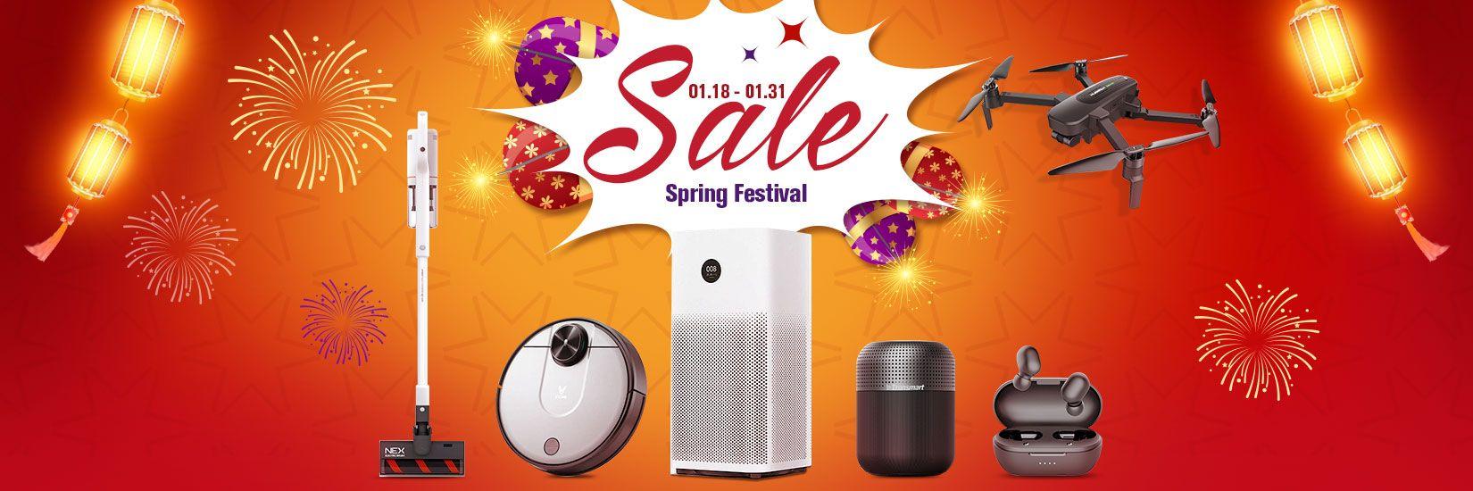 Spring Festival Sale